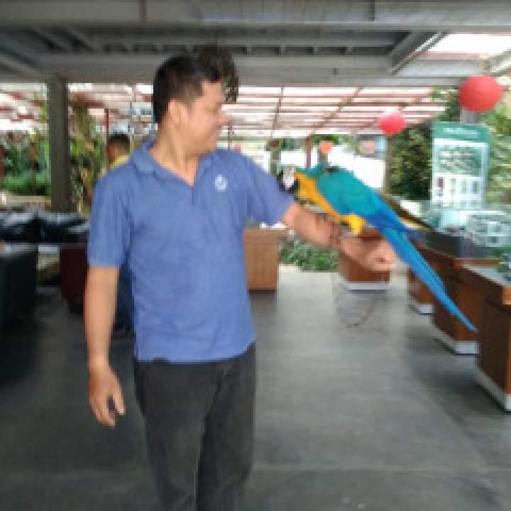 Irfandi Photo On Bogor Swingers Club