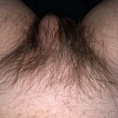 Hairydick