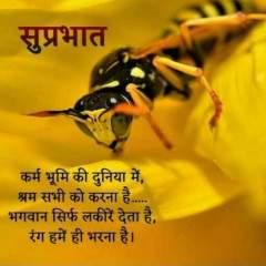 Ravi Raj