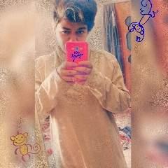 Fereshteh Profile Photo