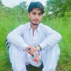 Rehmat Maseed Profile Photo